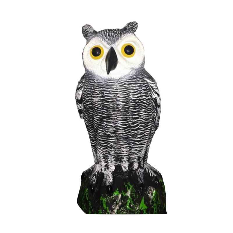 Little Owl Decoy Protection Repellent Bird Pest